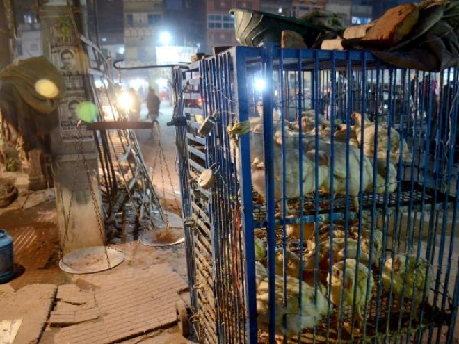 Hindu Sena members arrested for shutting meat shops